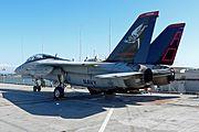 F-14 Tomcat on Hornet 2