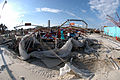 FEMA - 11303 - Photograph by Jocelyn Augustino taken on 09-26-2004 in Alabama.jpg