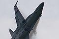 F A-18 Hornet Solo Display (7278736686).jpg