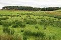 Farmland at Cronberry - geograph.org.uk - 978360.jpg