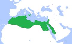 Kalifatet år 969 efter erobrelsen af Ægypten.