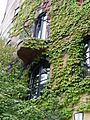 Fenster Waldspirale 11.JPG