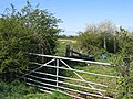 Field Gate, Hedges and Sheep from Highfield Lane - geograph.org.uk - 407669.jpg