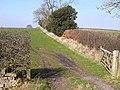 Field boundary near Carr Hill Farm - geograph.org.uk - 1211889.jpg