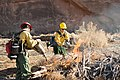 Firefighters use drip torches to light a vegetation pile in upper Courthouse Wash. These piles are accumulations of plant (e5c65705-f571-4e73-9b04-2d36d8a8e620).jpg