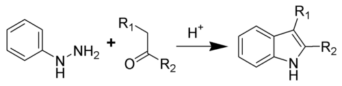 Fischer Indole Reaction Scheme.png