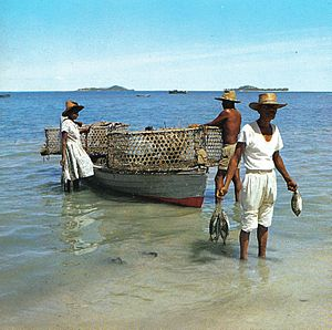 Economy of Seychelles - Fisherman landing his catch, in the early 1970s