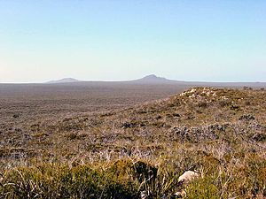 Esperance Plains - A scene from the Fitzgerald River National Park, showing scrub-heath on a plain, with granite outcrop on the middle-ground right