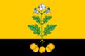 Flag of Falyonki (Kirov oblast).png