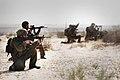 Flickr - Israel Defense Forces - Paratroopers Brigade Exercise, Sept 2010.jpg