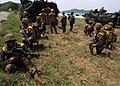 Flickr - Official U.S. Navy Imagery - U.S. Marines participate in a simulated amphibious assault conducted with Royal Thai marines for Cooperation Afloat Readiness and Training Thailand 2012..jpg