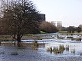 Flooding, Thames Valley Park - geograph.org.uk - 319409.jpg