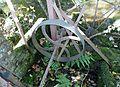Flywheel on water pump, Hessilhead hamlet.JPG