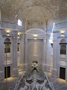 Calamita cosmica nella ex chiesa della Santissima Trinità in Annunziata a Foligno