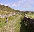 Foot path near Ingleton - panoramio.jpg