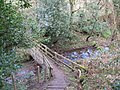 Footbridge over stream south of Acomb - geograph.org.uk - 1269399.jpg