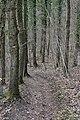 Footpath GR 57 near 'Les Roches Noires'.jpg