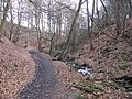 Footpath by Porter Brook - geograph.org.uk - 1753576.jpg