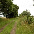 Footpaths crossing bridleway - geograph.org.uk - 1395426.jpg