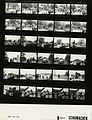 Ford A9834 NLGRF photo contact sheet (1976-05-15)(Gerald Ford Library).jpg