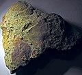 Fossiliferous sandstone (Vinton Member, Logan Formation, Lower Mississippian; Toboso East railroad cut, Licking County, Ohio, USA) 6 (30749874414).jpg