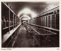 Fotografi från Pompejis museum, 1888 - Hallwylska museet - 107907.tif