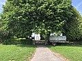 Friedhof Reine Haupteingang und Turm hinter Linden.jpg