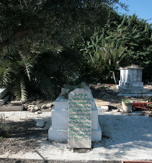 Balad al-Sheikh - Grave of Izz al-Din al-Qassam who was buried in Balad al-Sheikh in 1935