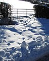 Gate and snow - geograph.org.uk - 1651039.jpg