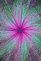 Geometrics - 7045402663.jpg