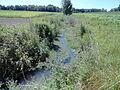 Gewässer mit Kennzahl15724 03.JPG