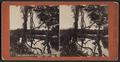 Geyser Lake, Saratoga Springs, N.Y, from Robert N. Dennis collection of stereoscopic views.png