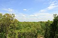 Gfp-indiana-dunes-national-lakeshore-forest-and-sky.jpg