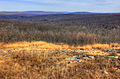 Gfp-missouri-taum-sauk-mountain-state-park-viewing-the-ozarks.jpg