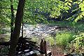 Gfp-wisconsin-lapham-peak-state-park-pond.jpg
