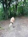 Giant toadstool sculpture, Wade Wood, Luddenden - geograph.org.uk - 944223.jpg