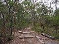 Gibberagong Trail - panoramio (2).jpg