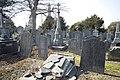 Glasnevin Cemetery - (442816719).jpg