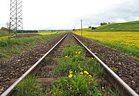 Gleis der Fuchstalbahn am Schongauer Galgenbichl.jpg