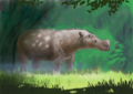 Gobitherium.png