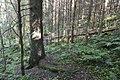 Grøumgrana-medium-Birgit-Broso.jpg