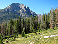 Grand Mogul from Redfish Lake Creek trail.jpg
