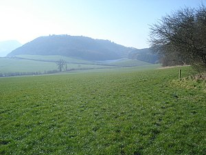 Grassland at Knill Farm - 2 - geograph.org.uk - 901529.jpg