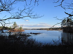 Great Quittacas Pond, Rochester MA.jpg