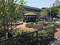 Green schoolyard.jpg