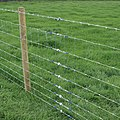Gripple Wire Joining & Fencing.jpg