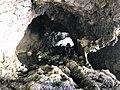 Grotta Perciola 07.jpg