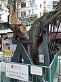 HK 石塘咀 Shek Tong Tsui 山道 Hill Road 加倫臺兒童遊樂場 Clarence Terrace Children's Playground metal holders.jpg