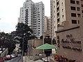 HK ML 香港半山區 Mid-levels 舊山頂道 Old Peak Road near Hornsy Road April 2020 SS2 19.jpg