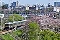Haciko-Line-209.jpg